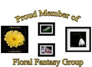 Floral Fantasy – Member Profile Badge