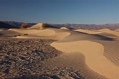 IMG_4558 (Aaron Matney) Tags: california light sunrise landscape sand shadows desert dunes tokina deathvalley ripples 1224mm mesquitedunes canon40d