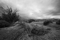 Distant Storm (K-Szok-Photography) Tags: california blackandwhite canon outdoors desert mojave canon1740f4lusmgroup monochromeaward kenszok