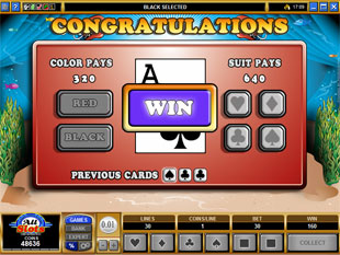 free Fighting Fish gamble feature