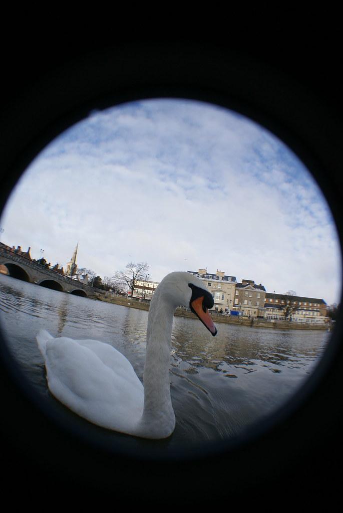 Swan + swan hotel + Bedford town bridge