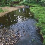 River Black Water