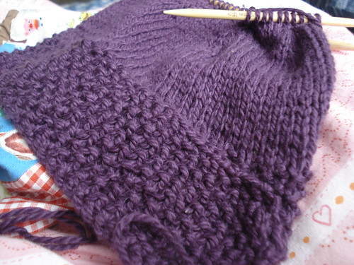 blackcurrant hat - wip