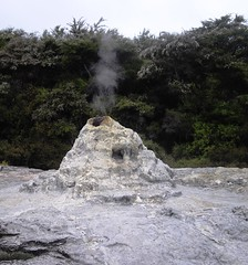 Lady Knox At Rest (81Up) Tags: newzealand geyser geothermal ladyknox