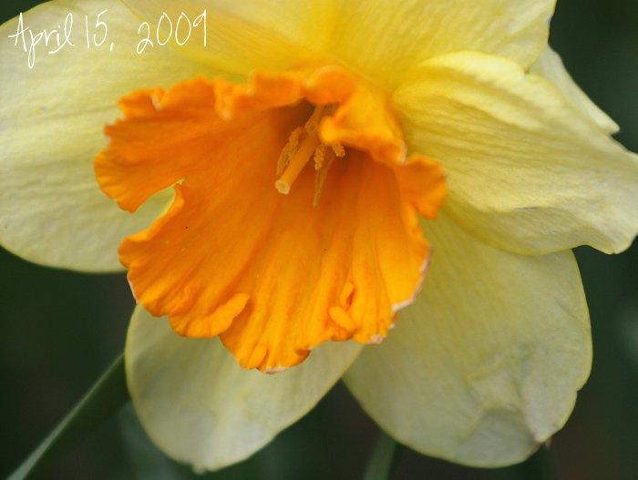 01-07-spring8