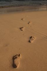 Las Cucharas footprints (Greysnapper (guinnessisgood4you)) Tags: sea beach sand footprints lanzarote canaryislands huella costateguise lascucharas