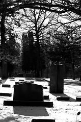 Super High Contrast Graves