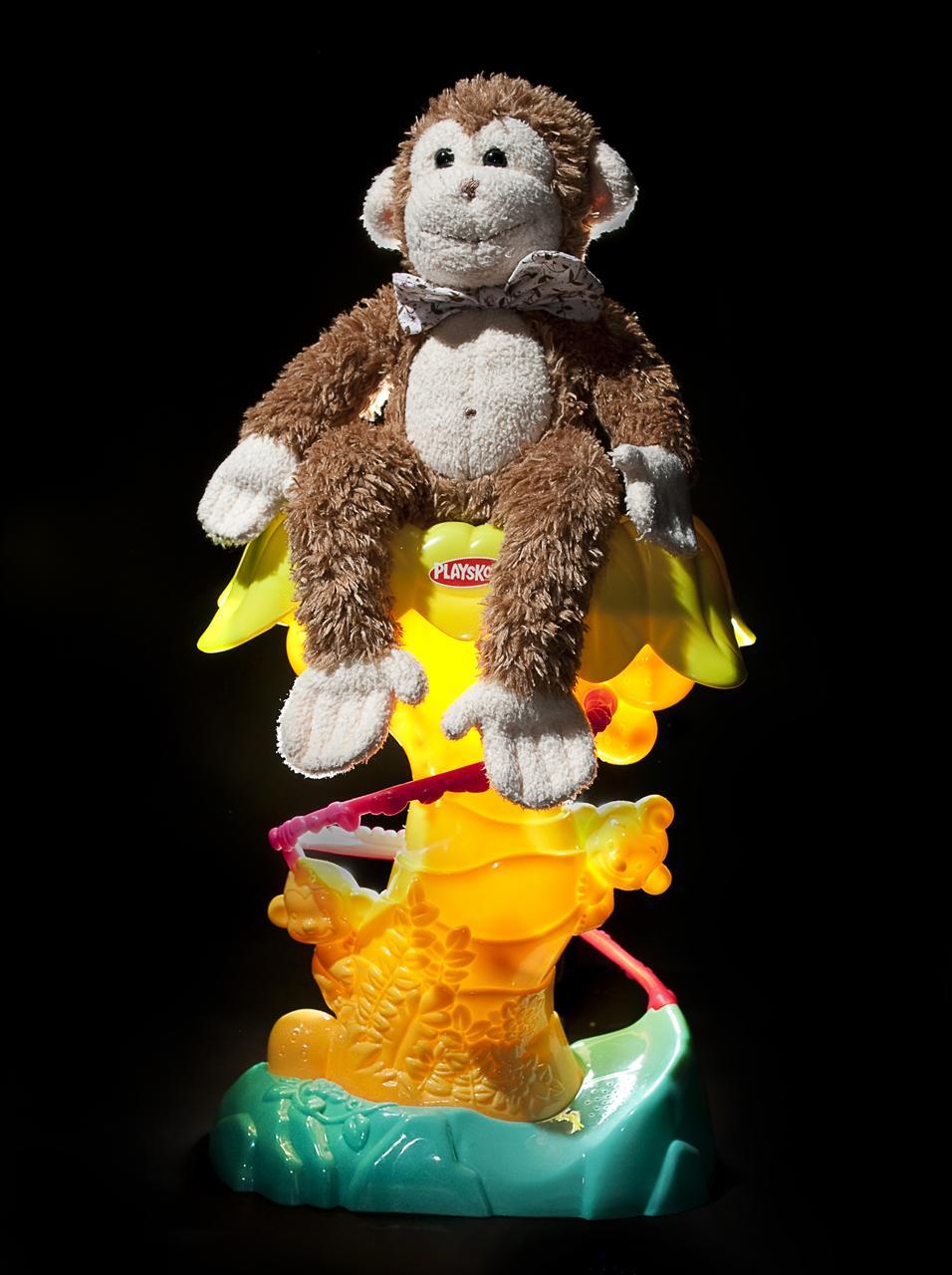 Douglas the Monkey (17 of 365)