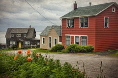 Margaretsville, NS (sminky_pinky100 (In and Out)) Tags: travel houses canada texture tourism rural landscape community pretty novascotia gray scenic poppies colourful residential margaretsville 5photosaday omot cans2s canadamedal