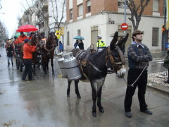 sant antoni tres tombs vilanova 2010 els burros catalans