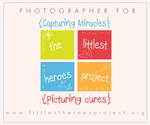 littlestheroesproject copy
