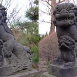 DSCF1012 高木神社の狛犬 komainu (parallel 3D) thumbnail