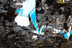 scrap of paper (Daniel Kulinski) Tags: life macro up closeup mirror still close zoom 10 evil samsung ten create capture less enlarge magnify proximity closer nx mirrorless kuliski nx10 samsungnx10 nxten