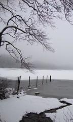 Loch Ard in winter (cocopie) Tags: winter lochard