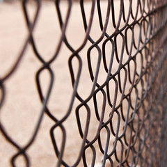 Fence curves