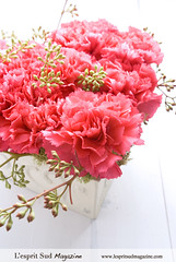 A pink carnations heart for Valentine's Day (L'esprit Sud Magazine) Tags: pink flowers wedding floral design heart shaped valentine fresh romantic carnation sweetheart centerpiece valentinesday hotpink floraldesign centerpieces flowerdesign onlinemagazine mywinners theunforgettablepictures heartshapeddesign thestylishbloom wwwthestylishbloomcom dazzlingflowerideas