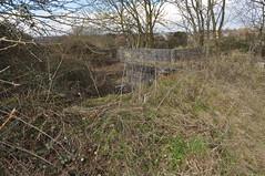 Anti-aircraft gun site, Purdown, Bristol, Bristol 'Purdown Percy' (19) (Curmo) Tags: bristol blitz percy purdown