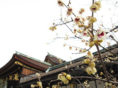 (jun.skywalker) Tags: japan kyoto