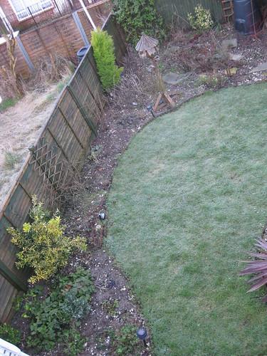 Upper lawn 01/03/2010