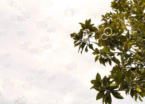 ( bubbles )