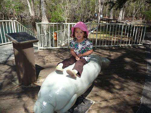riding a manatee.