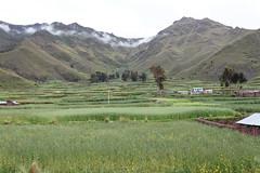 baudchon-baluchon-cuzco-IMG_9381-Modifier