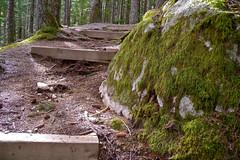 Chilliwack Lake Provincial Park
