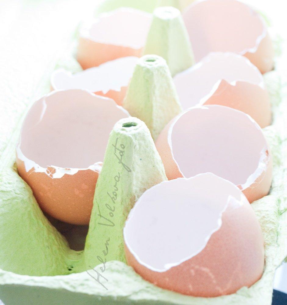ex-eggs-4