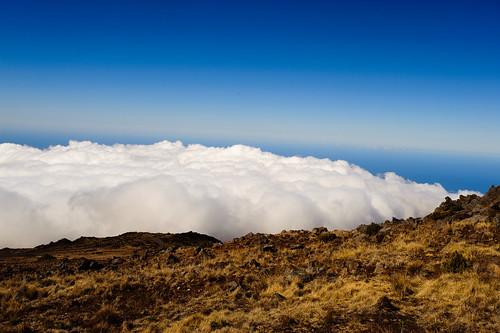 dm-HAWAII-20100215-1813
