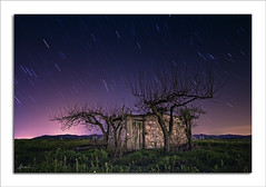 Night Colors (WisoNet) Tags: night magenta nocturna ciudadreal lamancha tamarit nightcolors wisonet villartadesanjuan