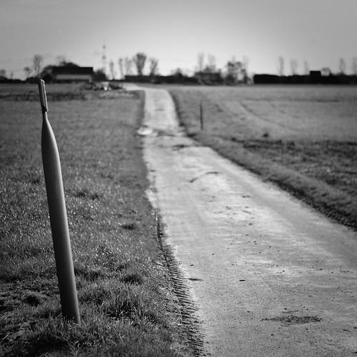Am Wegesrand stehen seltsame Pfähle,...