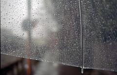On a rainy day (Nam2@7676) Tags: film japan dof pentax bokeh scan  epson dnp lx nam2 centuria200 31mm fa31 kmount 7676 v750 smcpfa31mmf18 justpentax gtx970 smcfa31mm118allimited yasunarinakamura  nam27676