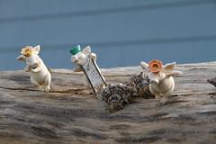happy piglets (Calovi) Tags: wood travel blue vacation public fun houseboat piglet sausalito calovi