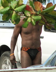 Sight Unseen - 2 (Legin_2009) Tags: man black tree male men guy beach leaves outside outdoors leaf african guys males slip torso caribbean mann speedo abs speedos mnner hombres mec herren  beachwear mecs mannes  unterwsche gason    hommes homens