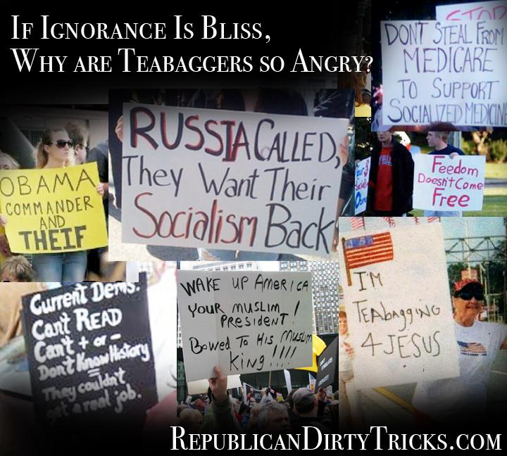 Teabagger Ignornace Image