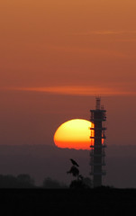 up on the roof again (Dru Marland) Tags: cloud tower sunrise bristol volcano mast crow dust telecommunication purdown