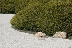 Japan House garden (metabrilliant) Tags: flowers rock spring rocks stones zen universityofillinois uiuc champaign meditation blooms shrub zengarden springtime uofi champaignil japanhouse