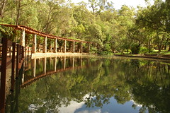 Araluen Botanical Gardens 081 (pixbytk - Who knew 4 years would go so fast???) Tags: trees water reflections araluenbotanicalgardens mtrtrophyshot