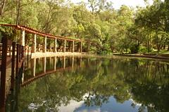 Araluen Botanical Gardens 081 (pixbytk - Who knew 4 years would go so fast???) Tags: trees water reflections araluenbotanicalgardens mtrtrophyshot