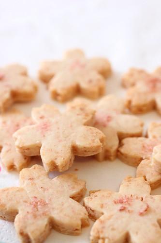 Sakura Cookies 3