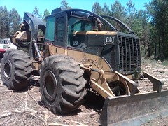CAT 525B Skidder with Winch in NC 06 (Jesse Sewell) Tags: cat forsale forestry logging 360 caterpillar 525 winch 630 deere 660 grapple 545 620 catarpillar 560 tigercat 460 timberjack 848 catrpiller 648h singlearch 525b 360c 450c 560c 610c 660c 620c catrpillar 540h 640g 535b 460c 525c wwwskidderzonecom skidderzone 518c 540g dualarch 535c wwwjessesewellwordpresscom wwwyoutubecomuserskidderzone wwwflickrcomphotosskidderzone 545c 648g 748g 548g 548g2 548gii 540g2 540gii 540giii 548g3 540g3 640g2 640gii 640giii 640g3 640h 548h 748h 848h 848g3 848giii 848g2 648gii 630c 630d e620c