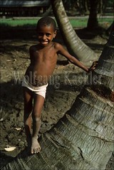 50002411 (wolfgangkaehler) Tags: portrait village native traditional villager villagepeople oceania villagelife traditionalvillage villagescene villageboy traditionalclothing nativepeople irianjaya localboy asmat nativeboy westnewguinea asmatregion asmattribespeople
