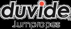 duvide logo