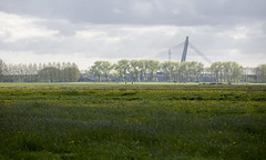 _MG_4864 (Ferry Streng) Tags: nes weerribben kamperland hoogspanningskabels