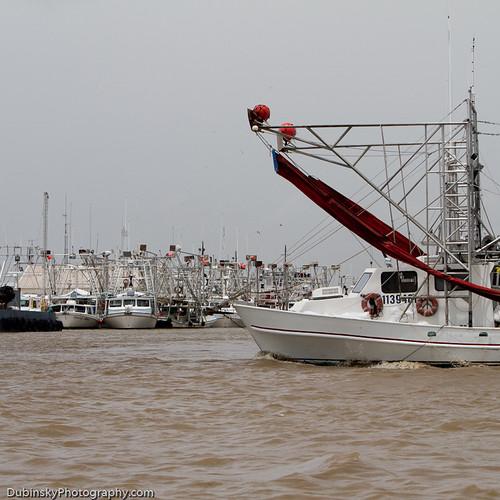bp oil spill 2010