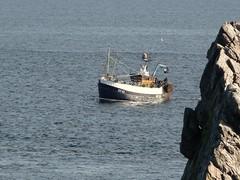 Transcend (allyB803) Tags: sea boats fishing morayfirth trawlers