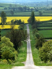 A Country Road (saxonfenken) Tags: road trees england green motif yellow leicestershire lane superhero thumbsup sb 6905 bigmomma gamewinner byroad challengeyou challengeyouwinner favescontestwinner friendlychallenge ultrahero thechallengefactory fotocompetition fotocompetitionbronze yourock1stplace gamex2winner ultraherowinner gamex3winner pregamewinner storybookttwwinner thechallengefactoryunam 6905land