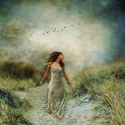 * Free As A Bird *