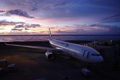 Garuda Indonesia's Airbus 330 at DPS Airport - Bali (Matt@PEK) Tags: dps garudaindonesia a330 airport
