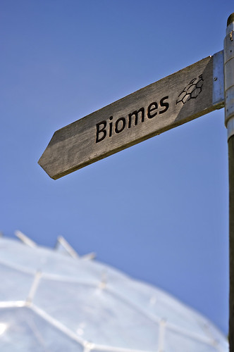 This Way To The Biomes
